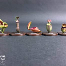 【ノーマル5種セット】密林の怪罠 食虫植物